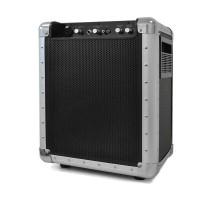 Активная система SkyTec PA-200 Portable USB SD MP3 АКБ