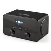 Мультимедиа центр Auna Connect 100 интернетрадио Bluetooth WLAN USB AUX Line Out BK DMNP