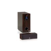 5-дюймовый сабвуфер Areal Elegance 50 Вт и центр BT USB SD AUX пду