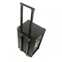 Активная акустическая система Ibiza Port-8D-USB 100 Вт